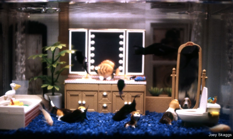 Joey Skaggs Fish Condos: Bathroom 2