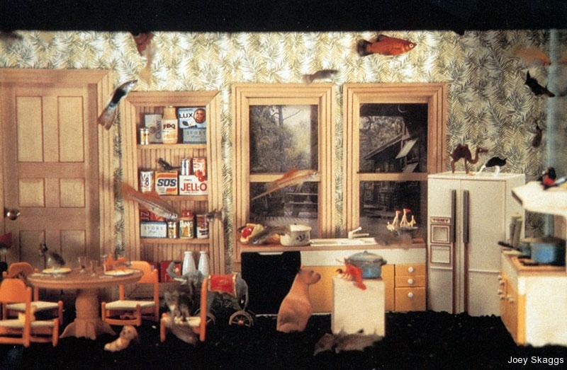 Joey Skaggs Fish Condos: Kitchen 2