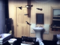 Joey Skaggs Fish Condos: Bathroom 3