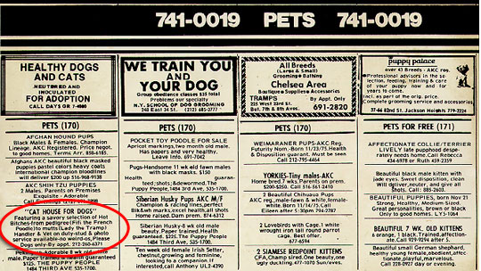 Village Voice, Cathouse for Dogs Ad, January 12, 1976